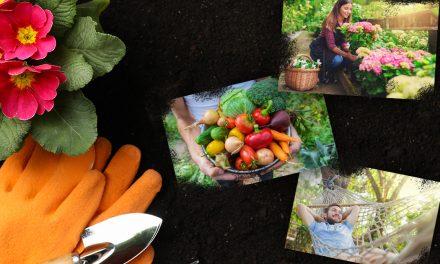Ab in den Garten! – Die Gartentrends 2020