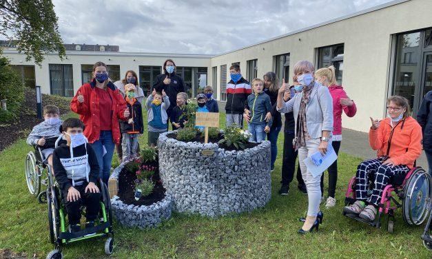 Eine blühende NektarTankstelle für Chemnitzer Terra Nova Campus – Die Entdeckerschule